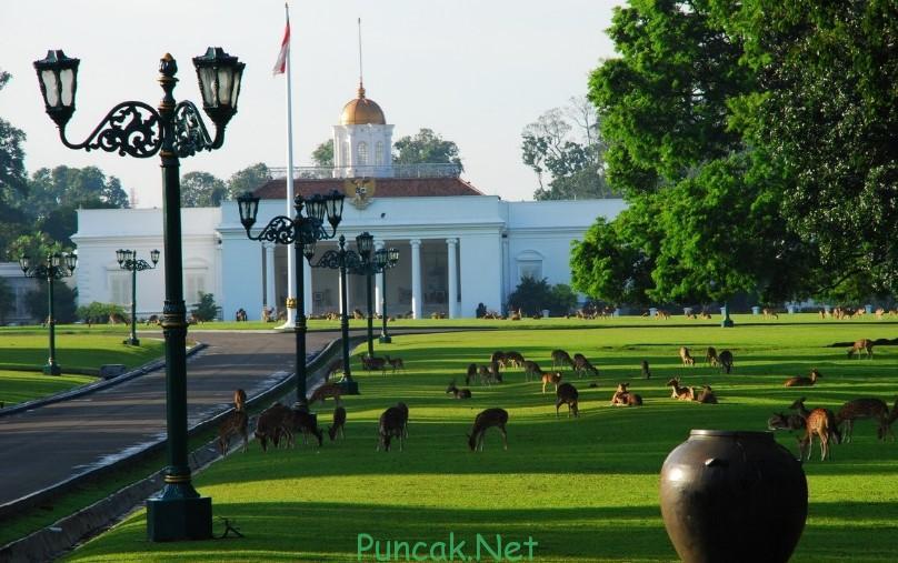 Kebun Raya Bogor, Tempat Wisata Alam Di Bogor