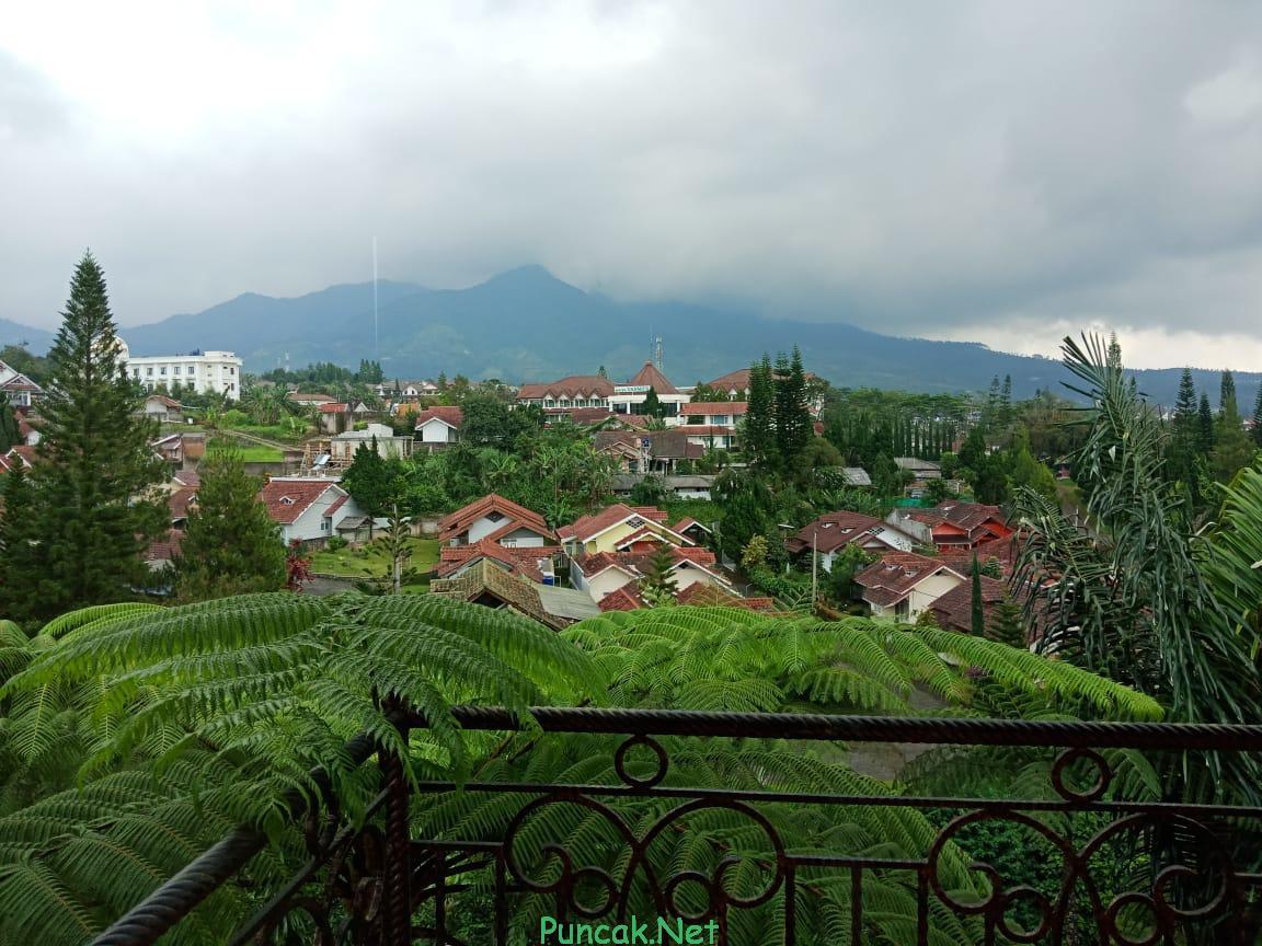 Sewa Villa Di Puncak Dengan Pemandangan Indah